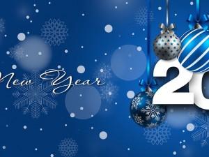 Buon anno da tutta la famiglia del Csi Treviso